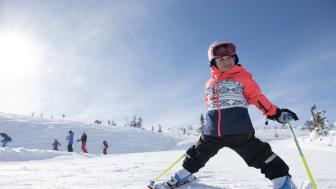 Rekordmånga skidturister i Stöten under jul och nyår.