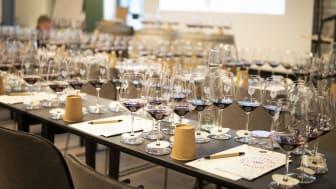 Vinutbildning - en crash course i vinkunskap