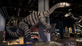 Gigantisk dinosaurie gör entré