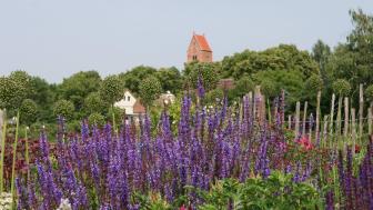 Bald öffnen die Gärten im ganzen Land wie beispielsweise hier in der Uckermark (Foto: Rosenschule Uckermark)