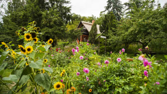Das Haus der Naturpflege in Bad Freienwalde würdigt die Arbeit der Schöpfer des Symbols für Naturschutzgebiete. Foto: TMB-Fotoarchiv/Steffen Lehmann.