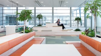 Codesign skapar växtkraft i Sundbybergs nya stadshus