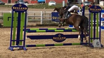 I helgen gör ponnyryttare i zon öst upp om segern i regionfinalen i Sveland cup, denna gång i Växjö.