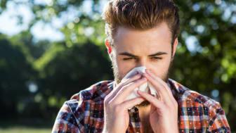 Plaget av pollen? 5 tips for en bedre vår
