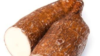 Lieferant für Tapiokastärke: Maniok. Bild: Edward Westmacott | fotolia