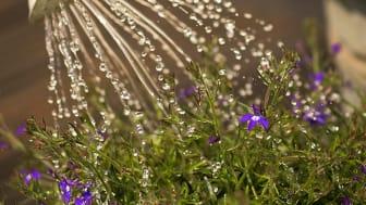 NSVA uppmanar invånare i Åstorps kommun att spara på dricksvattnet