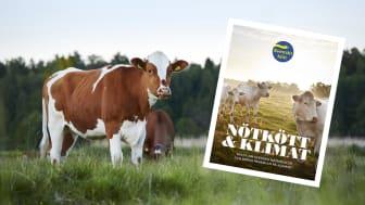 """""""Nötkött och klimat - fakta om svenska nötkreatur och deras påverkan på klimatet"""""""