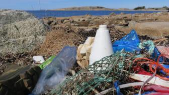 Plastskräp längs bohuskusten