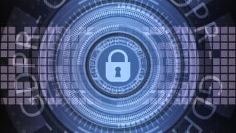 EU:n uuden tietosuoja-asetuksen hallitseminen on yrityksissä jatkuva hallinnollinen prosessi   Kuva: Pixabay