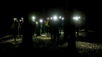 En ljusare höst väntar Team Nordic Trail