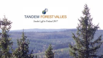 First call for Tandem Forest Values applications is launched on Finland's 100 year anniversary. Photo: Ylva Nordin.