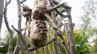 Barnens skulpturpark - Fågelkärlek (detalj3)