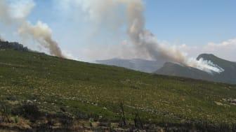 Vegetationsbränning i Etiopien. Foto: Maria Johansson