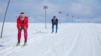 Storhogna-aktiviteter-längdskidåkning-vinter-vemdalen.jpeg