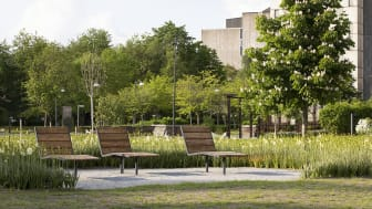 Solstolar erbjuder vila och återhämtning i parken vid Huddinge sjukhusområde.