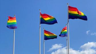 En ny nordisk forskningsrapport om unga LGBTI-personers hälsa skriven av en forskare vid JU presenterades under World Pride. JU hissar Pride-flaggorna den 23-29 augusti i samband med den lokala pridefestivalen Jönköping Qom ut.