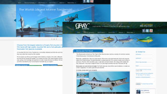 Gray Taxidermy launches NEW Website