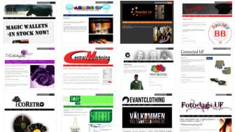 Unga företagares webbshopar