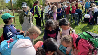 """Under maj månad kommer 5500 andraklassare från skånska skolor till Skånes Djurpark för att lära sig om bondgården och matens kretslopp i Sparbanken Skånes skolprojekt """"En dag med gårdens djur""""."""