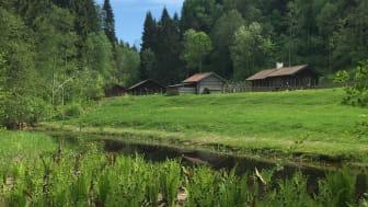 Fäboden i Säterdalen. Foto: Säters kommun