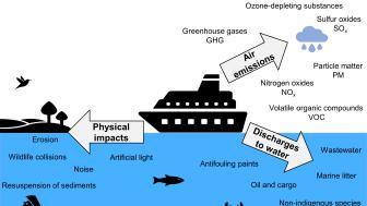 Illustration som visar resultatet från litteraturstudien om sjöfartens miljöeffekter.