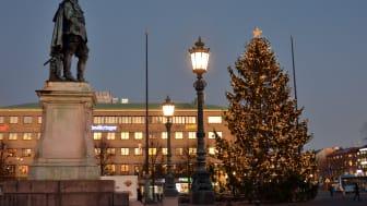 Julgranen på Gustaf Adolfs torg 2019