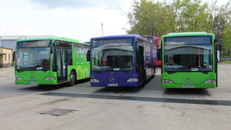 Project MOVE buses