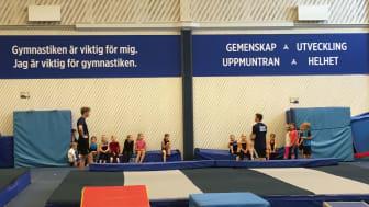 Sigtuna Märsta Gymnastikklubb är Årets gymnastikförening!