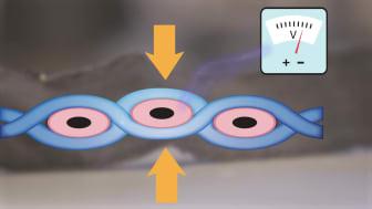 Animation; textilen alstrar el när fibrerna deformeras
