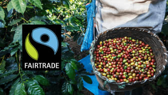 Fairtrade-kaffe