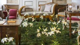 Inspireras av Sveriges främsta trädgårdskreatörer på Nordiska Trädgårdar