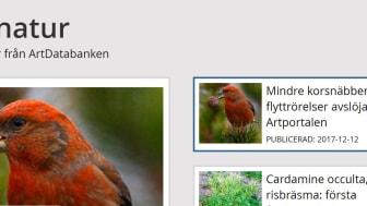 Dagens natur publiceras av ArtDatabanken SLU. Här hittar du nyheter och analyser om biologisk mångfald, arter och naturvård. Mindre korsnäbb fotograferad av Hans Bister.