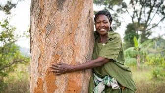 Francis Nakitto i Uganda kramar sitt första Vi-skogenträd – 25 år gammalt! Tidigare var det svårt att få lyckade skördar. Tack vare träden som kan planteras när du skänker pant får hon ut mer grödor och kan försörja sin familj.