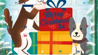MultiFit-Adventskalender Hund