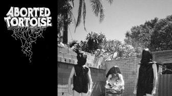 "Aborted Tortoise bring the ruckus on their ""Scale Model Subsistence Vendor"" EP via Goodbye Boozy Records"