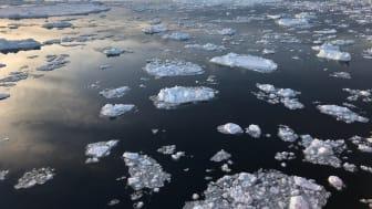 Bild från Weddellhavet i Antarktis som nu inte får marint skyddat område. Foto: Thomas Dahlgren