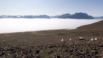 Forskarna har följt parasitoidernas och deras värdar i Zackenbergdalen i Nordöstra Grönland. För att fånga parasitoider använder de ofta av världens bästa insektsfällor, en tältliknande konstruktion uppfunnen av svensken René Malaise.