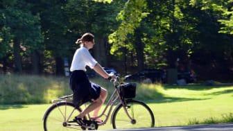 Tips inför cykelturen eller Djurgårdspromenaden i helgen.