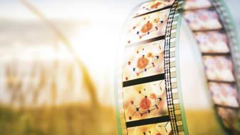 Forskare tar steg mot att fånga en molekylär film av hur bildning av syre-syrebindning sker i naturen. Greg Stewart / SLAC National Accelerator Laboratory