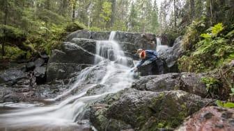 Unika naturvärden i harmoni med god smaker och ett rikt kulturarv lockar utländska journalister att besöka Höga Kusten.
