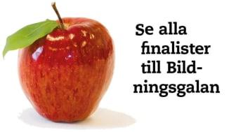 Finalisterna till Bildningsgalan klara