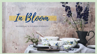 In Bloom: Rosenthal's colourful flower diversity