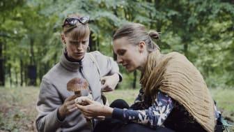Skåne introducerer i disse år smagsvandringer, hvor man som deltager går fra den ene delikatesse frem mod den næste. Foto: Meadow Lab