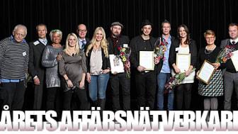 Nätverkande av toppklass när Årets Affärsnätverkare 2012 utses