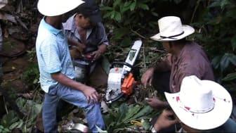 Elskov bevarer regnskoven i Honduras