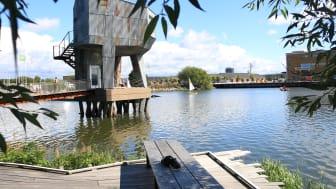 Foto: Jubileumsparken