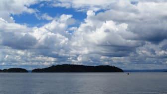 """Ved Bevøya utenfor Son er den økologiske tilstanden gått fra """"god"""" til """"dårlig"""" på fem år på grunn av forverring i nedre voksegrense (Foto: Wikimedia Commons)"""
