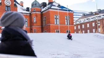 Pulkabacke på Rådhustorget i Umeå
