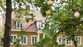 Ortala huvudbyggnad exteriör äpple