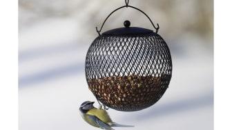 Nyhet! Fågelmatare i snygg design.